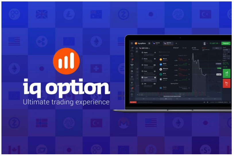 IQ Option Review - What You Need To Know?