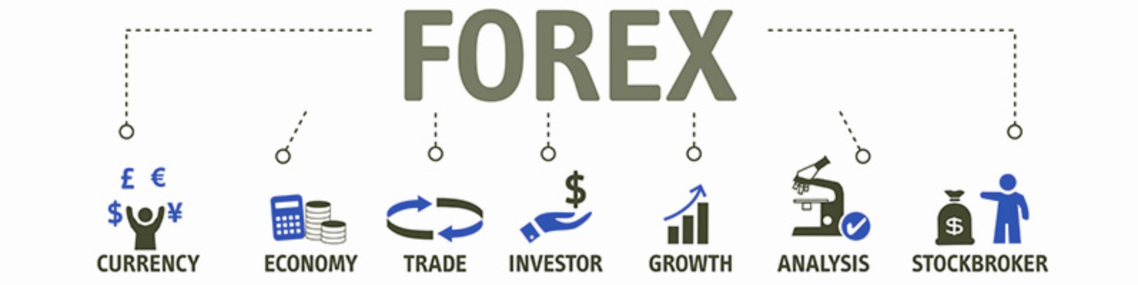 Forex for begginers